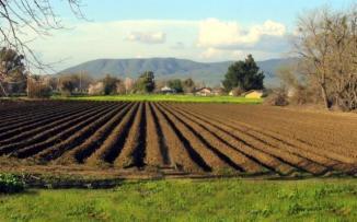 biodiversitatea-fermelor-poate-fi-imbunatatita-daca-exista-o-stransa-colaborare-intre-fermieri-si-oameni-de-stiinta-studiu-14533